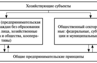 Государственная регистрация хозяйствующих субъектов (Реферат)