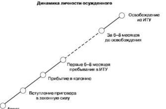 Воспитательный процесс осужденного и динамика его психических состояний. Контрольная работа. Психология. 2013-11-30