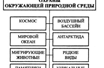 Состояние охраны окружающей среды в России. Реферат. Экология. 2012-01-27