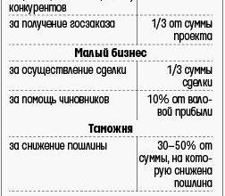 Государственная служба и коррупция. Дипломная (ВКР). Основы права. 2012-09-04