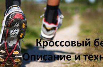 Кроссовая подготовка учащихся., Физкультура и спорт - Курсовая работа
