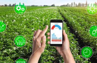 Реферат: Новые информационные технологии в сельском хозяйстве Таджикистана -