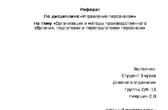 Организация и методика производственного обучения. Доклад. Педагогика. 2009-01-12