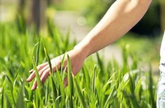 Влияние человека на экологию. Это должен знать каждый житель планеты