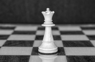 Дипломная работа: Проблемы правового регулирования в сфере осуществления закупок у единственного поставщика и предложение путей их решения
