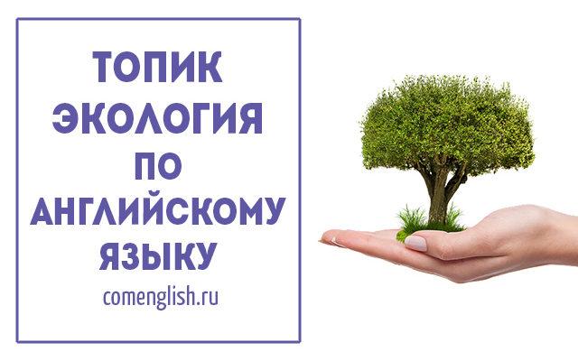Сочинение (топик) по английскому на тему экологические проблемы