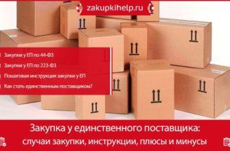 Закупка у единственного поставщика - Скачать Реферат - Сочинения - Cardboardmodem38088