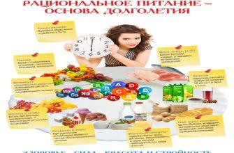 Питание как компонент здорового образа жизни. Реферат. Другое. 2011-09-16