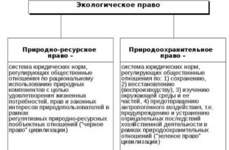 реферат найти Экологические права граждан в Российской Федерации