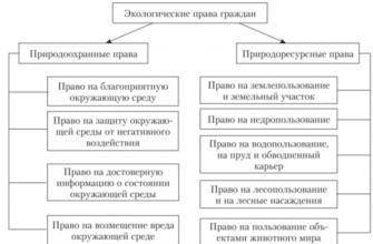 Правовое регулирование данных прав по российскому законодательству, их реализация и соотношение с другими экологическими правами.