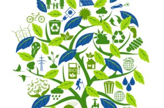 Антропогенные факторы и их влияние на человека и окружающую среду : Реферат : Экология