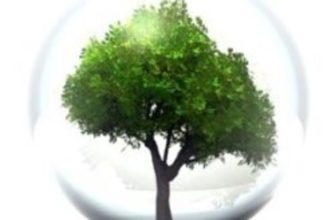 Экологические проблемы сельскохозяйственного использования земли — AgroXXI