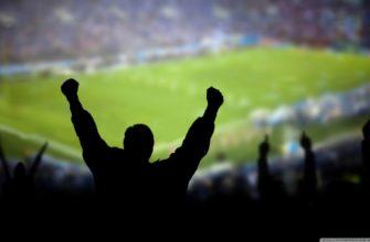 Футбольные фанаты как часть общества . Курсовая работа (т). Социология. 2008-12-09