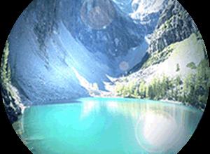 Аргентинская геморрагическая лихорадка — Википедия Переиздание // WIKI 2