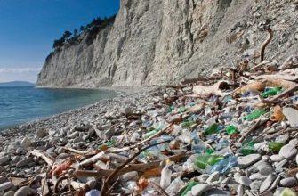 Загрязнение окружающей среды опасными отходами