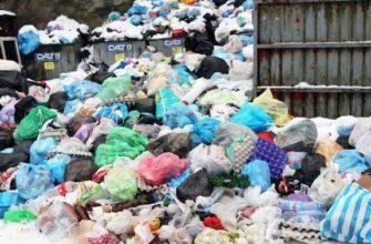 Управление системой сбора, утилизации и переработки твердых бытовых отходов   Реферат - бесплатно
