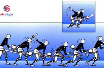 """🚀 Реферат на тему """"Техника основных движений и методика обучения им в волейболе"""" - готовая работа бесплатно"""