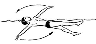 Плаванье. Техника плавания способом «кроль на спине» | Статья по физкультуре (5 класс) на тему:  | Образовательная социальная сеть