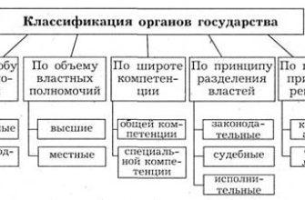 Строение и функции биомеханической системы двигательного аппарата - Биология - KazEdu.kz