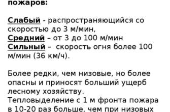 Вырубка лесов как экологическая  от SerDiTyi за 02.11.2019