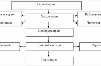 Понятие и виды федерации