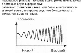 Реферат: Шум, вибрация, ультразвук и влияние на организм человека -
