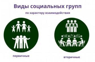Социальные группы. Реферат. Социология. 2015-07-23