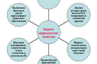 Профилактика неинфекционных заболеваний