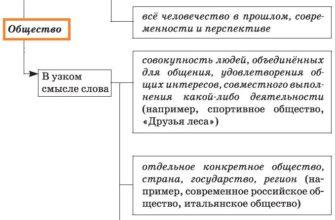 Философские проблемы взаимодействия природы и общества. Реферат. Философия. 2009-01-12