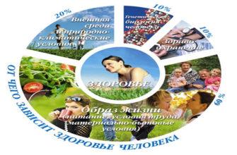Здоровый образ жизни, здоровое питание