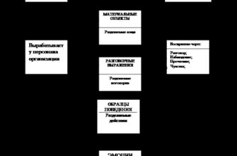 Организационная культура : Реферат : Менеджмент (Теория управления и организации)