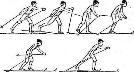 Техника безопасности на уроках лыжной подготовки  | Материал по физкультуре по теме:  | Образовательная социальная сеть