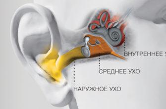 Потеря слуха: типы и их характеристики