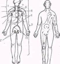 Массаж. Виды массажа. Влияние массажа на функциональное состояние организма – тема научной статьи по прочим медицинским наукам читайте бесплатно текст научно-исследовательской работы в электронной библиотеке КиберЛенинка