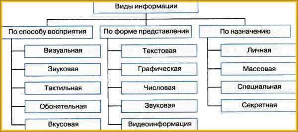 Изучение взаимосвязи компьютерной грамотности и информационной культуры.