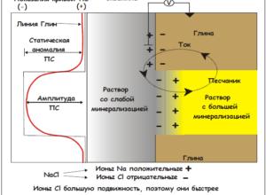 Метод потенциалов самопроизвольной поляризации (ПС)