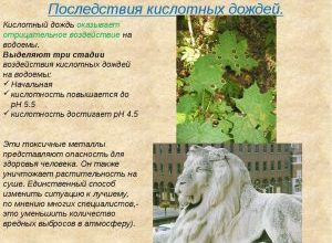 Воздействие человека на природу на различных этапах развития человеческого общества - Скачать Реферат - Курсовая работа - Oatmealresult33051