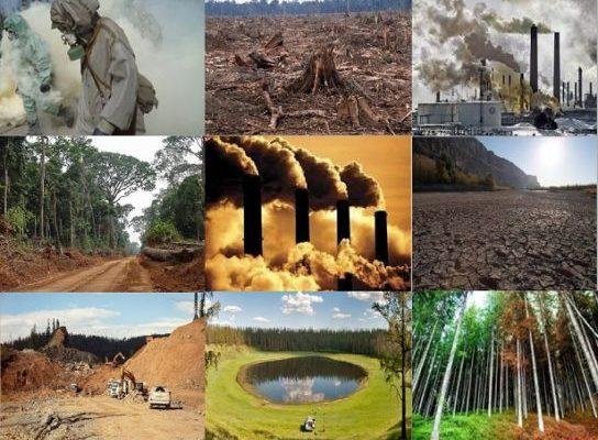 Антропогенное воздействие. Реферат. Экология. 2009-01-12