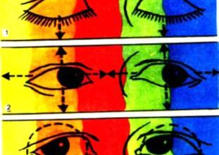 Реферат на тему «Глазодвигательная гимнастика школьников»