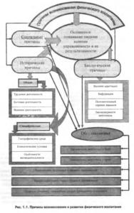 История развития физической культуры