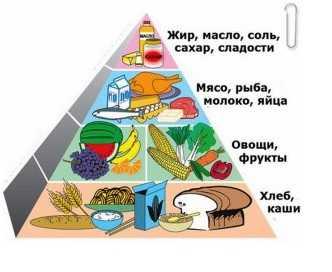 Проблемы питания современного человека. Основные принципы здорового питания