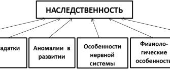 Ведущие факторы развития личности