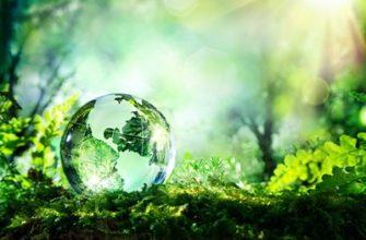 Научные основы оценки техногенных воздействий на окружающую среду. Основные каналы загрязнения атмосферы, гидросферы, почв - online presentation