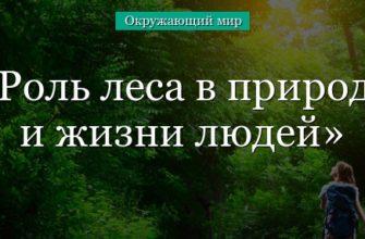 Экология. Значение леса (Антонина Горбунова-Наумова) / Проза.ру
