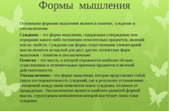 Основные виды мышления. Курсовая работа (т). Психология. 2010-12-31
