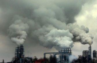 Экологические последствия загрязнения воздуха человеком.   Образовательная социальная сеть