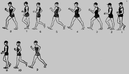 Реферат: Физические качества человека и методы их воспитания -
