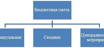 ФИНАНСОВЫЙ МЕХАНИЗМ БЮДЖЕТНЫХ И АВТОНОМНЫХ УЧРЕЖДЕНИЙ - Финансы бюджетных организаций социальной сферы