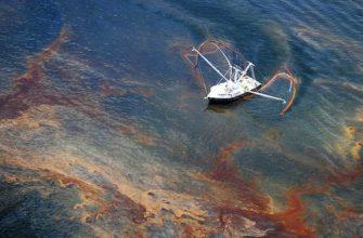 Доклад на тему Загрязнение мирового океана сообщение (описание для детей)
